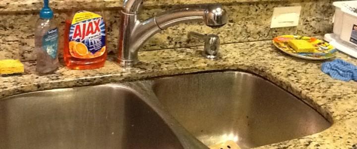 Как помыть детей вместе с животными и посудой?